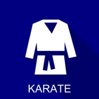icon karate