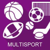 icone multisport