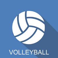 icon volley