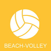 icon beach volley