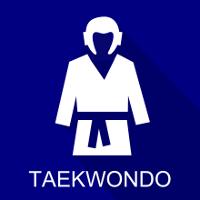 icon taekwondo