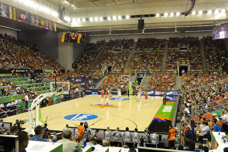 Championnat monde basket 2014