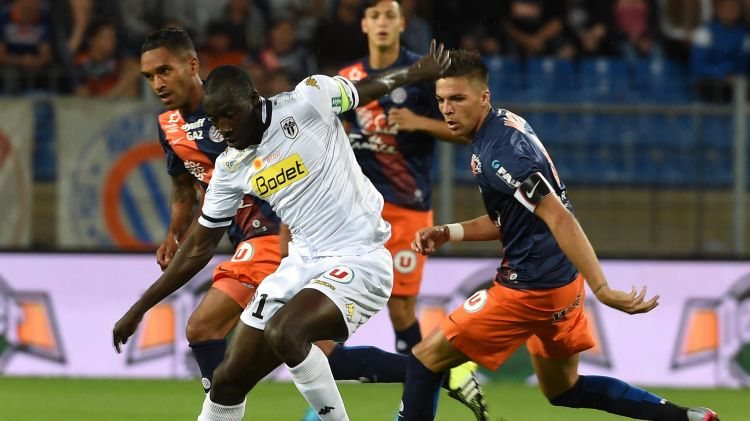 victoire angers sco montpellier