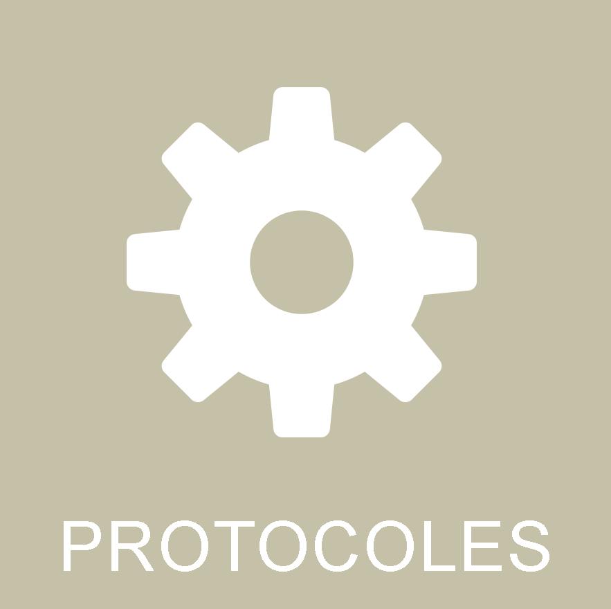 icone Protocoles